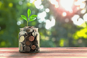 Plant growing from wealth
