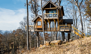 Treehouses of Serenity